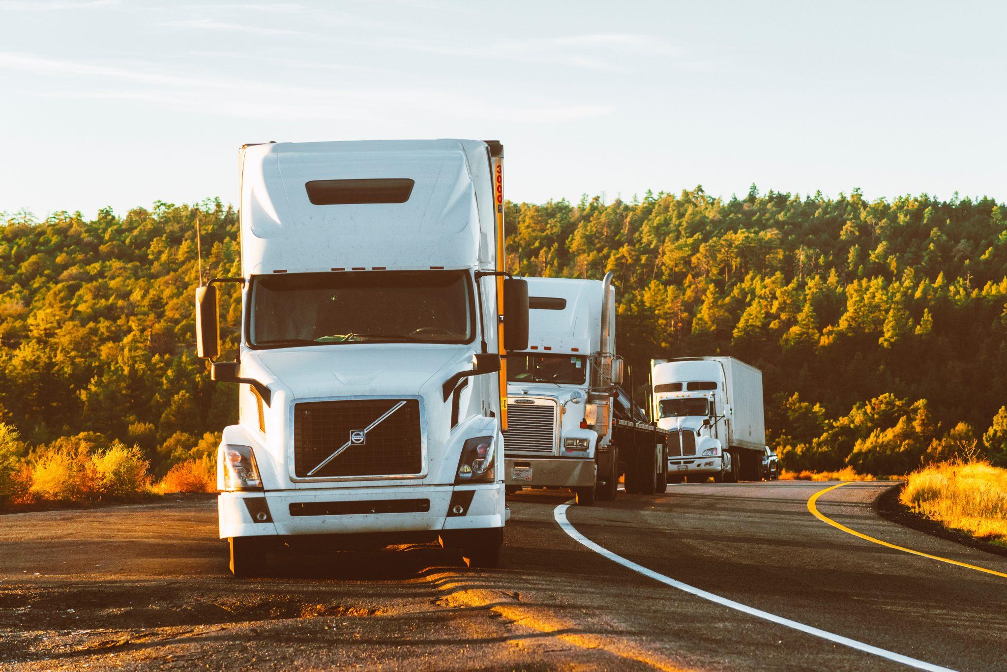 Camionista perdite pecuniarie diaria