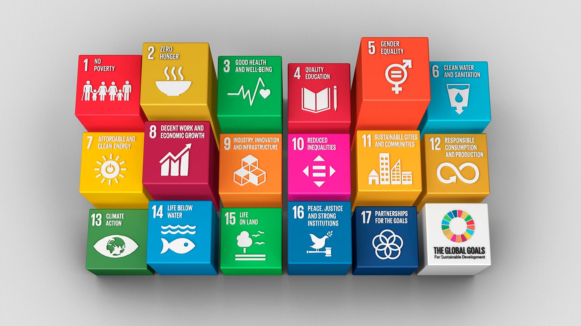 sostenibilità per il futuro